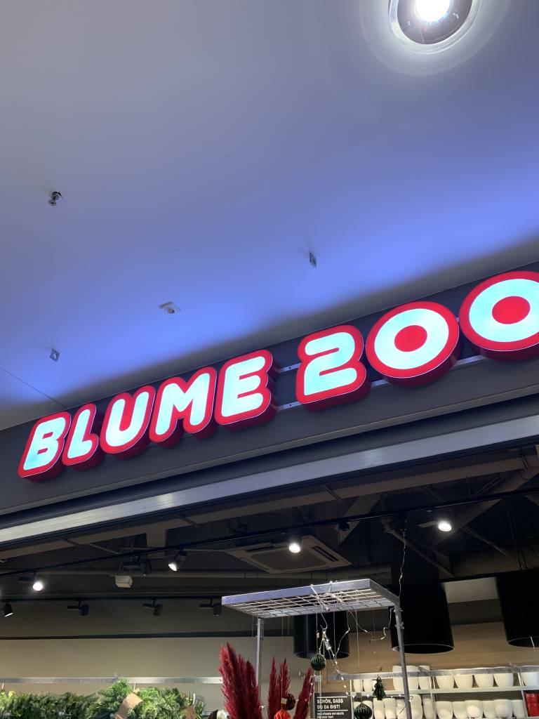Profilfoto von BLUME 2000