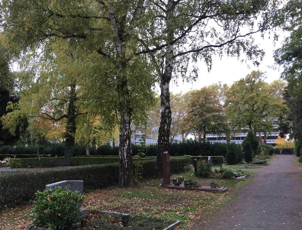 Profilfoto von Friedhof Platanenweg