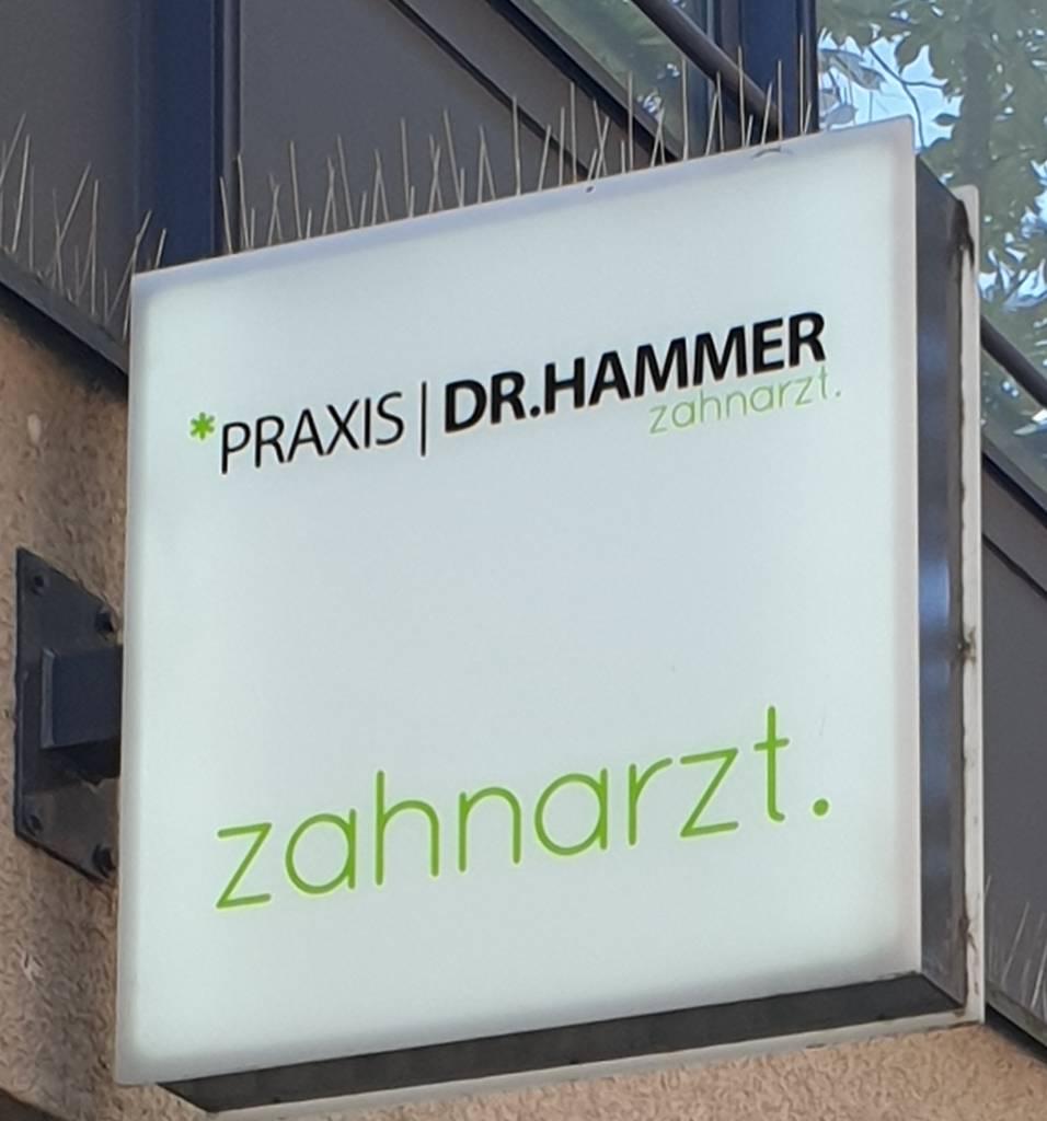 Profilfoto von Dr. med. dent. Martin Hammer